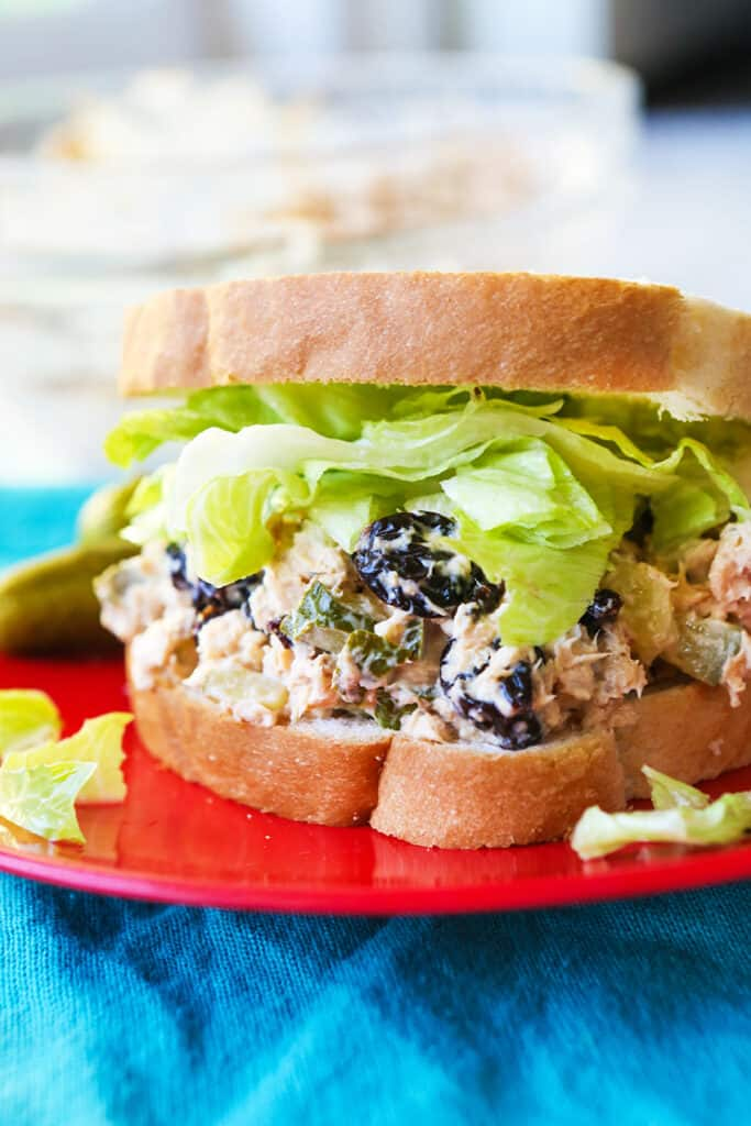 close up of chicken salad sandwich sitting on red plate