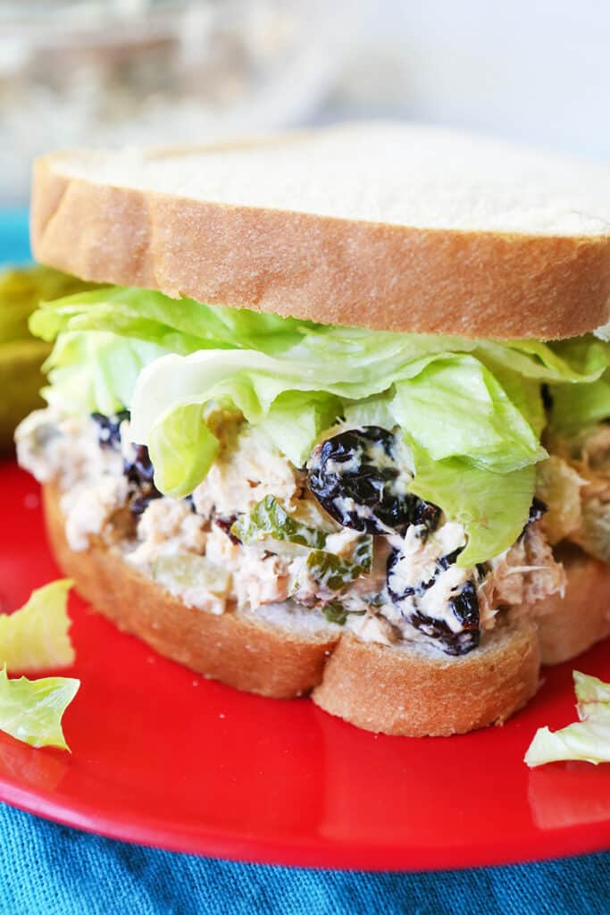close up of chicken salad sandwich with lettuce on red plate