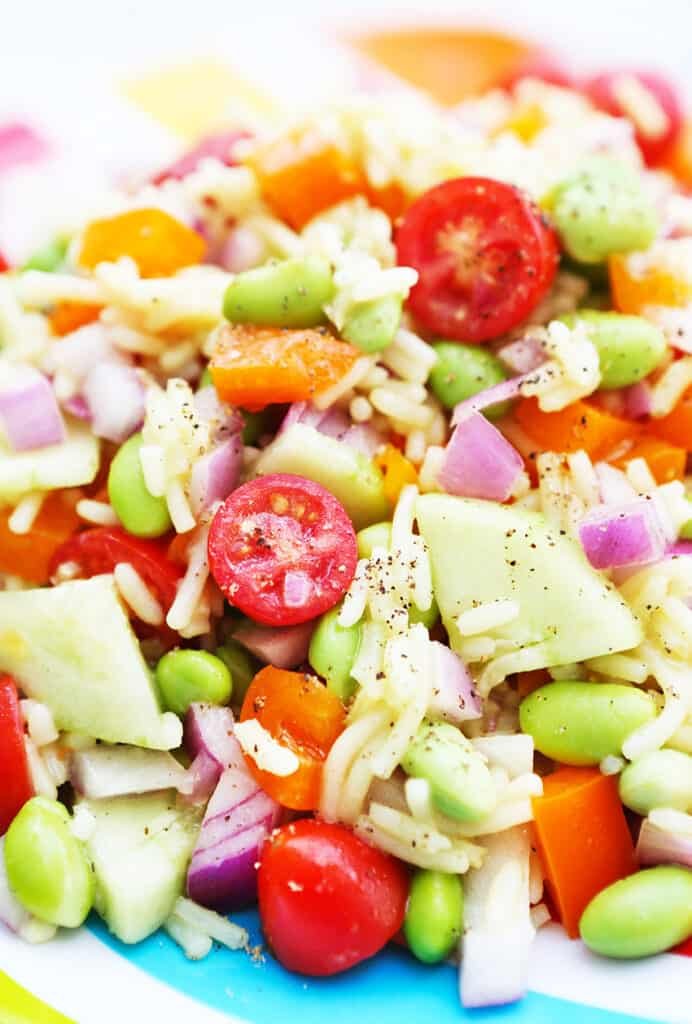 rice, cucumbers tomatoes and other veggies in a pile on a plate