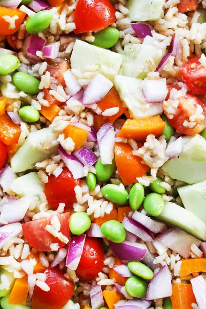 super close up and colorful photo of vegetable rice salad
