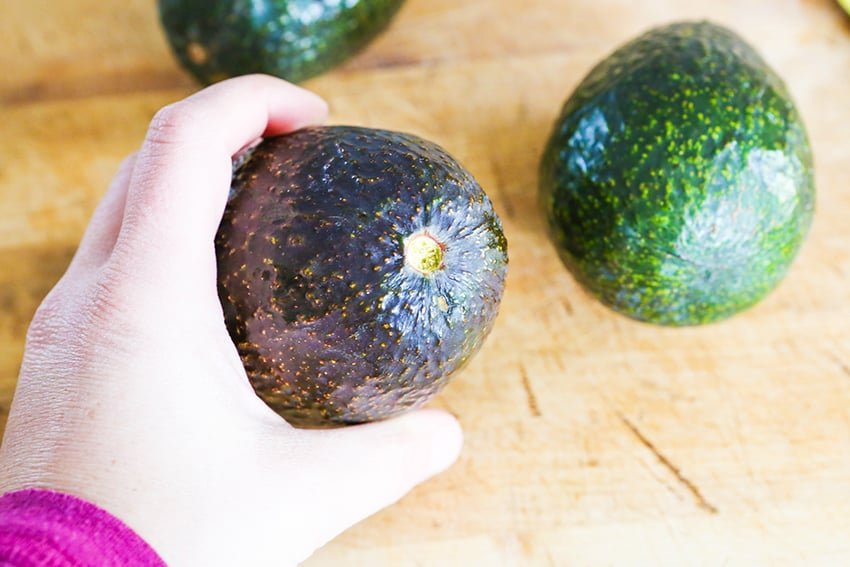 hand holding avocado with an exposed under side of the stem nub