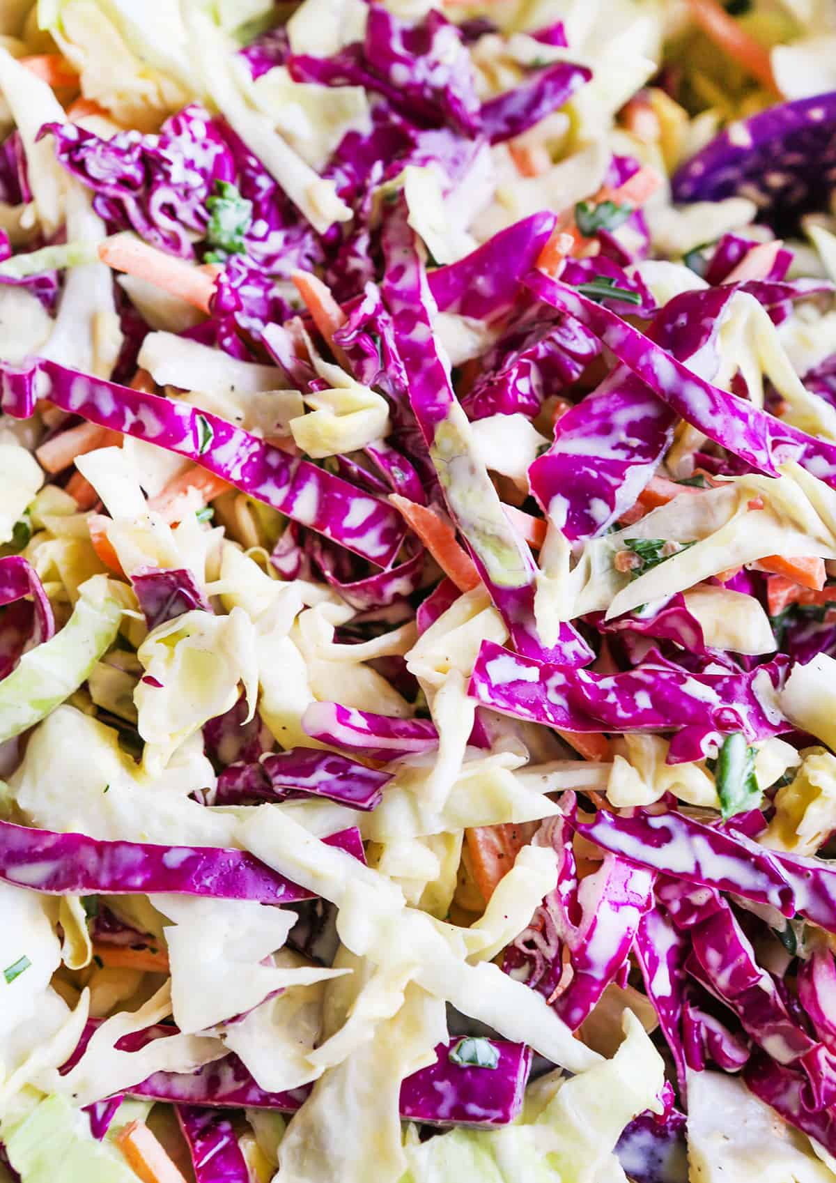 Close up of cabbage coleslaw with dressing.