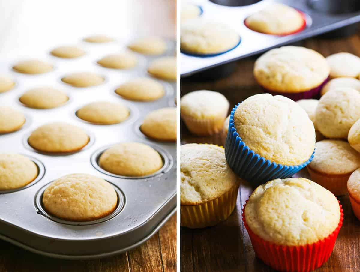 Cupcakes baked and sitting in muffin tin, and around it.